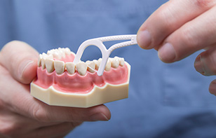 Close Up of Teeth Model and Floss